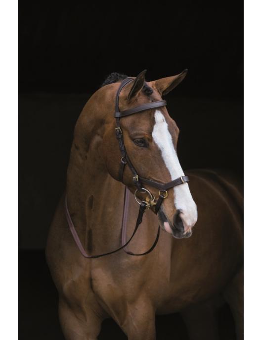 Horseware New Micklem Multi schwarz