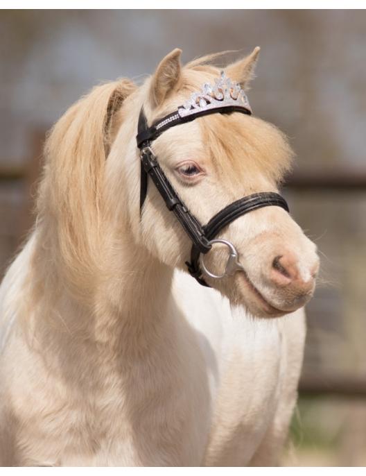 QHP Pferde Krone