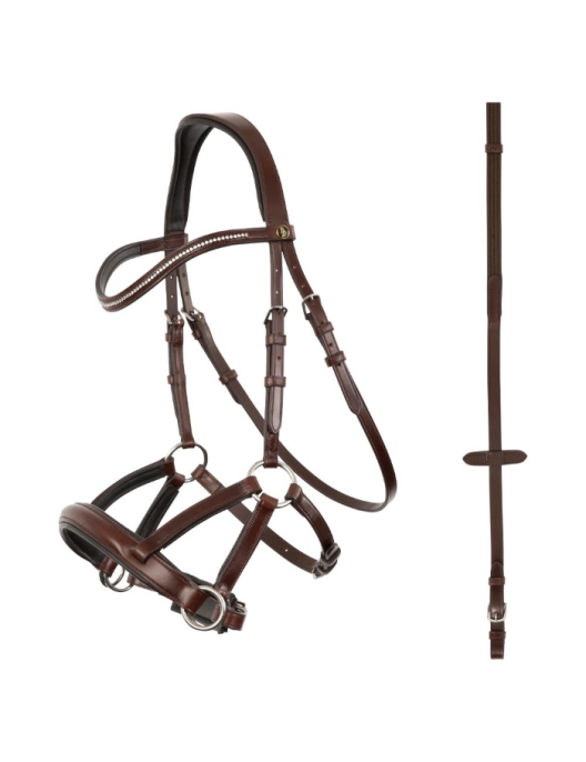 BR Bridle Lewes side & pull