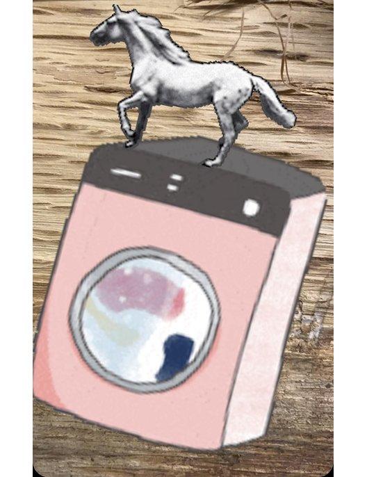 Pferdedeckenwäscherei